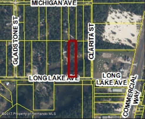 0 Long Lake Avenue, Weeki Wachee, FL 34613 (MLS #2182673) :: The Hardy Team - RE/MAX Marketing Specialists