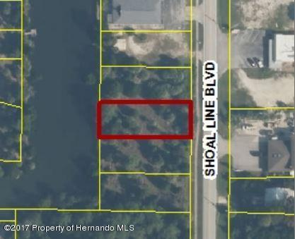 01 Shoal Line Boulevard, Hernando Beach, FL 34607 (MLS #2184502) :: The Hardy Team - RE/MAX Marketing Specialists