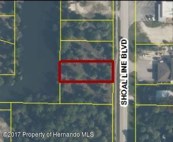 02 Shoal Line Boulevard, Hernando Beach, FL 34607 (MLS #2184503) :: The Hardy Team - RE/MAX Marketing Specialists