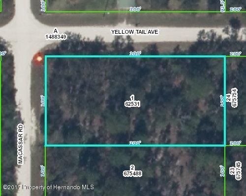 0 Yellow Tail Avenue, Weeki Wachee, FL 34614 (MLS #2184746) :: The Hardy Team - RE/MAX Marketing Specialists