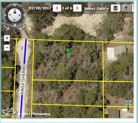00 Kingfisher Road, Brooksville, FL 34614 (MLS #2184750) :: The Hardy Team - RE/MAX Marketing Specialists