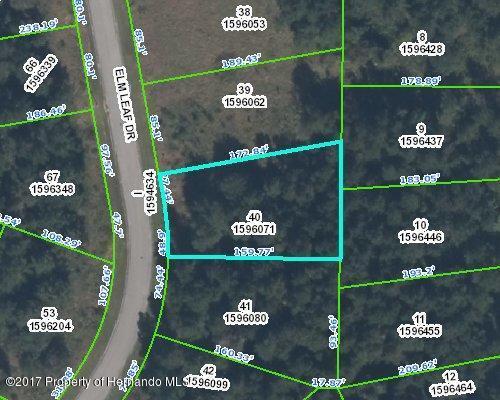 0 Elm Leaf Drive, Brooksville, FL 34601 (MLS #2184755) :: The Hardy Team - RE/MAX Marketing Specialists
