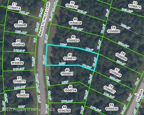 0 Majestic Hills Loop, Brooksville, FL 34601 (MLS #2184760) :: The Hardy Team - RE/MAX Marketing Specialists