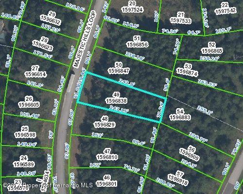0 Majestic Hills Loop, Brooksville, FL 34601 (MLS #2184761) :: The Hardy Team - RE/MAX Marketing Specialists
