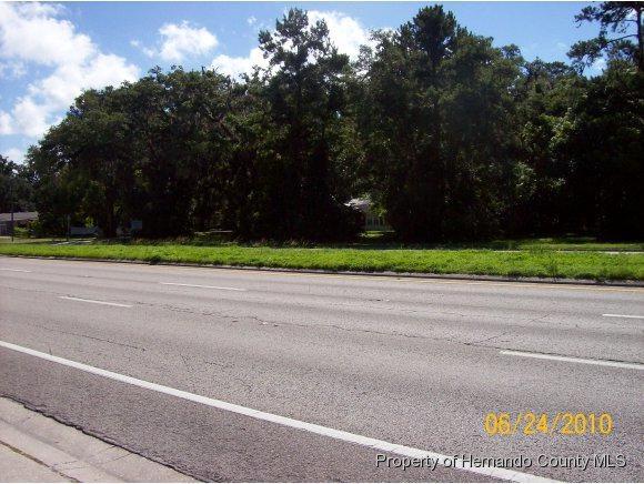 0 Broad Street, Brooksville, FL 34601 (MLS #2184962) :: The Hardy Team - RE/MAX Marketing Specialists
