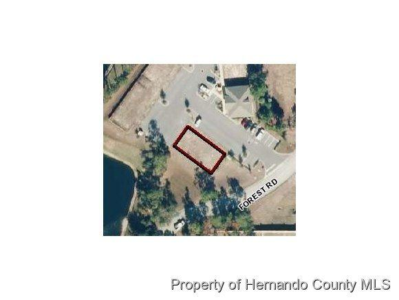 0000 Forest Road, Spring Hill, FL 34606 (MLS #2185004) :: The Hardy Team - RE/MAX Marketing Specialists