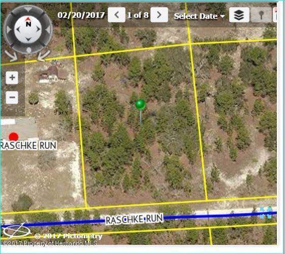 11467 Raschke Run, Brooksville, FL 34614 (MLS #2185339) :: The Hardy Team - RE/MAX Marketing Specialists