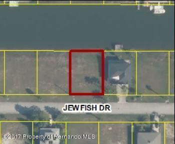 0 Jewfish Drive, Hernando Beach, FL 34607 (MLS #2186077) :: The Hardy Team - RE/MAX Marketing Specialists