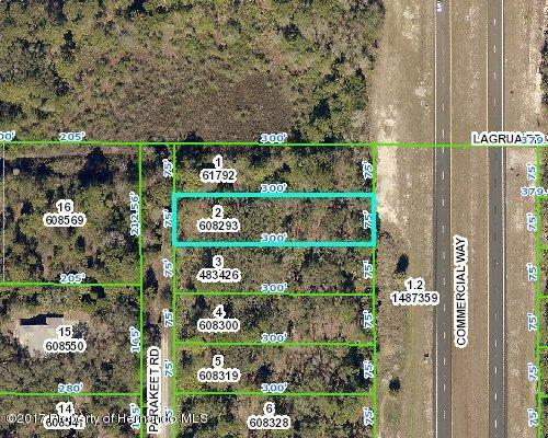 0 Commercial, Weeki Wachee, FL 34614 (MLS #2186127) :: The Hardy Team - RE/MAX Marketing Specialists