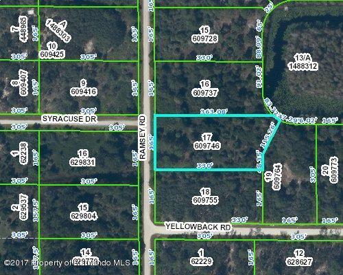 00 Ramsey Road, Weeki Wachee, FL 34614 (MLS #2186185) :: The Hardy Team - RE/MAX Marketing Specialists