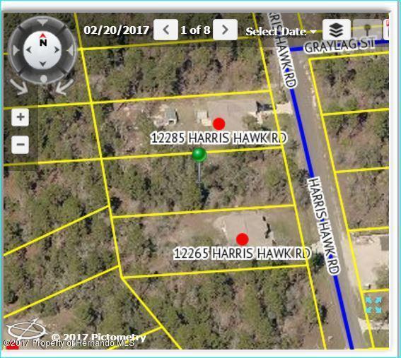 12275 Harris Hawk Road, Brooksville, FL 34614 (MLS #2186203) :: The Hardy Team - RE/MAX Marketing Specialists