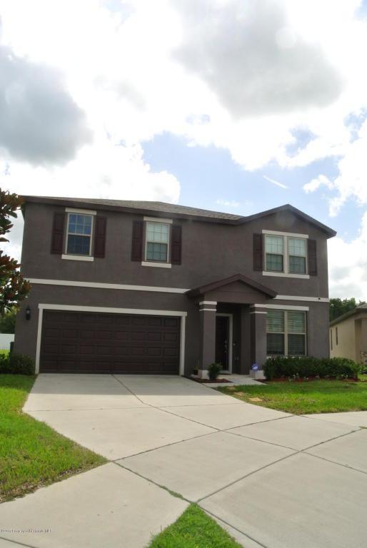 662 Petal Mist Lane, Brooksville, FL 34604 (MLS #2186208) :: The Hardy Team - RE/MAX Marketing Specialists