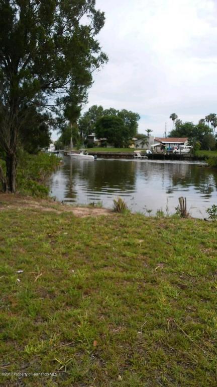 4 45 17 Flamingo, Hernando Beach, FL 34607 (MLS #2186337) :: The Hardy Team - RE/MAX Marketing Specialists
