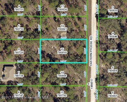 0 Eastern Phoebe Road, Weeki Wachee, FL 34614 (MLS #2186689) :: The Hardy Team - RE/MAX Marketing Specialists