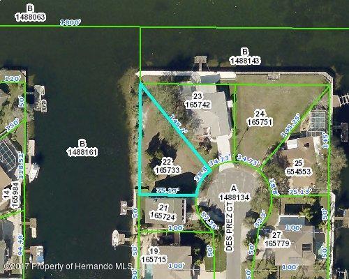 000 Des Prez Court, Hernando Beach, FL 34607 (MLS #2186819) :: The Hardy Team - RE/MAX Marketing Specialists
