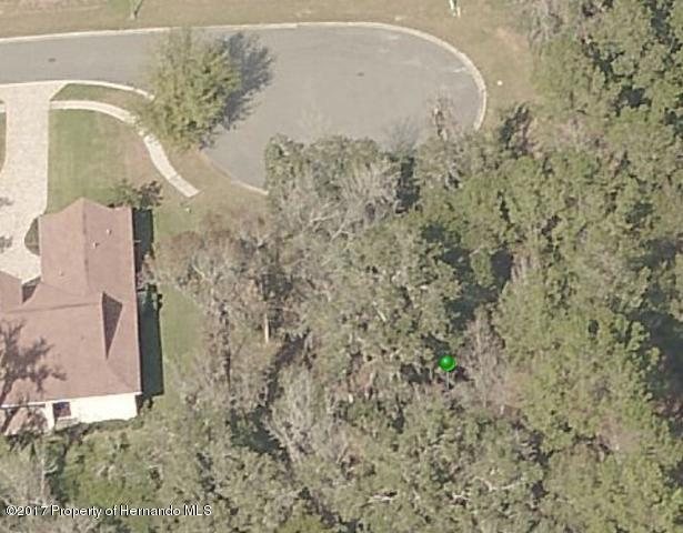 19586 Mossy Oak Court, Brooksville, FL 34601 (MLS #2186950) :: The Hardy Team - RE/MAX Marketing Specialists