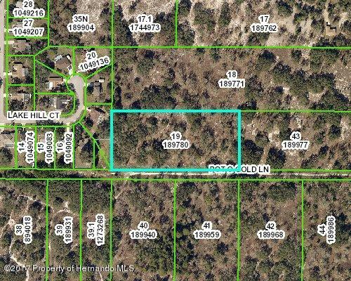 00 Pot O Gold Lane, Spring Hill, FL 34608 (MLS #2187137) :: The Hardy Team - RE/MAX Marketing Specialists