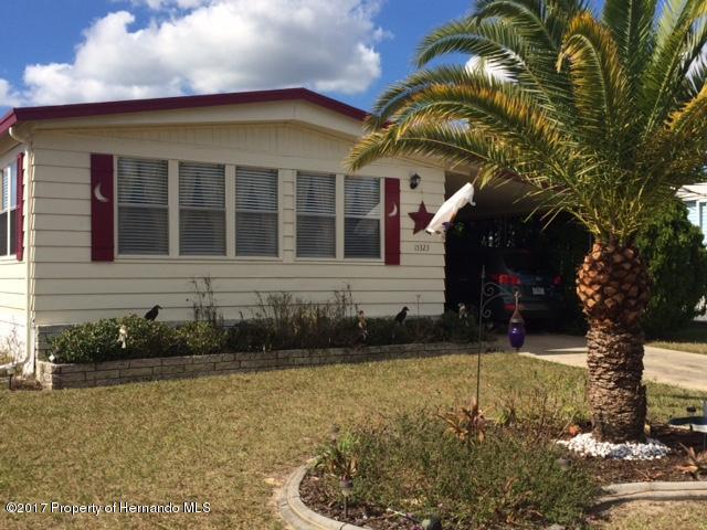 15323 Brookridge Boulevard, Brooksville, FL 34613 (MLS #2187768) :: The Hardy Team - RE/MAX Marketing Specialists