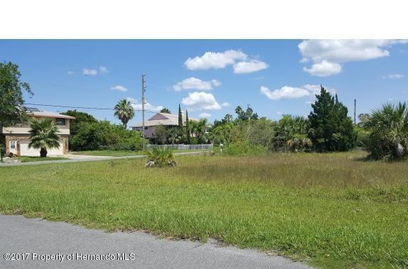 0 8th Isle Drive, Hernando Beach, FL 34607 (MLS #2188084) :: The Hardy Team - RE/MAX Marketing Specialists