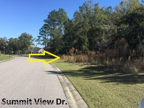 0 Summit View Drive, Brooksville, FL 34601 (MLS #2188126) :: The Hardy Team - RE/MAX Marketing Specialists