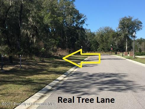 0 Real Tree Lane, Brooksville, FL 34601 (MLS #2188132) :: The Hardy Team - RE/MAX Marketing Specialists