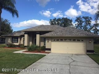 11013 Audie Brook Drive, Spring Hill, FL 34608 (MLS #2188176) :: The Hardy Team - RE/MAX Marketing Specialists
