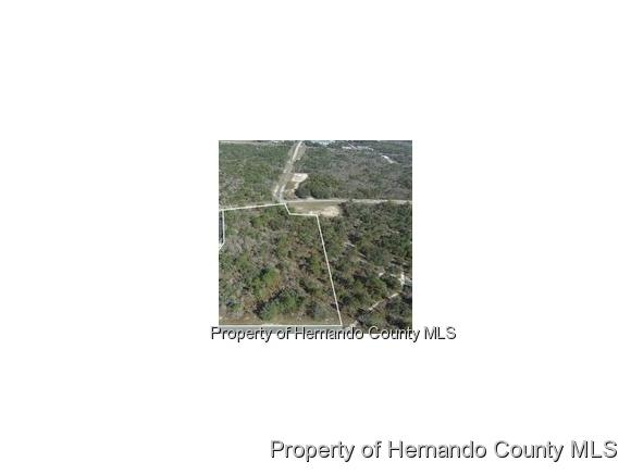 0 Anderson Snow Road, Spring Hill, FL 34609 (MLS #2188216) :: The Hardy Team - RE/MAX Marketing Specialists
