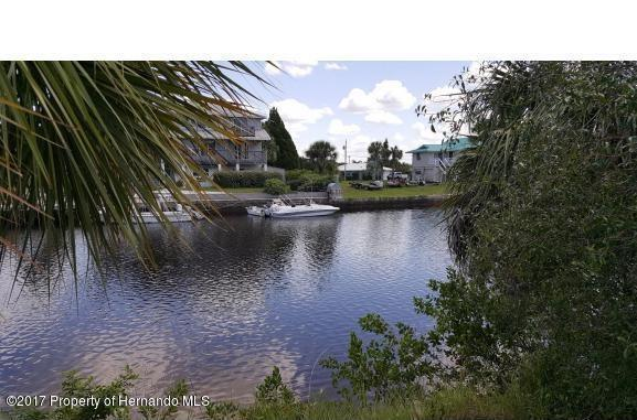 0 Flexer Drive, Hernando Beach, FL 34607 (MLS #2188253) :: The Hardy Team - RE/MAX Marketing Specialists