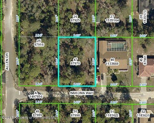 0000 Nakoma Way, Weeki Wachee, FL 34613 (MLS #2188483) :: The Hardy Team - RE/MAX Marketing Specialists