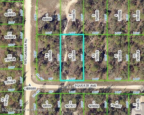 0000 Squeeze Avenue, Weeki Wachee, FL 34614 (MLS #2188488) :: The Hardy Team - RE/MAX Marketing Specialists