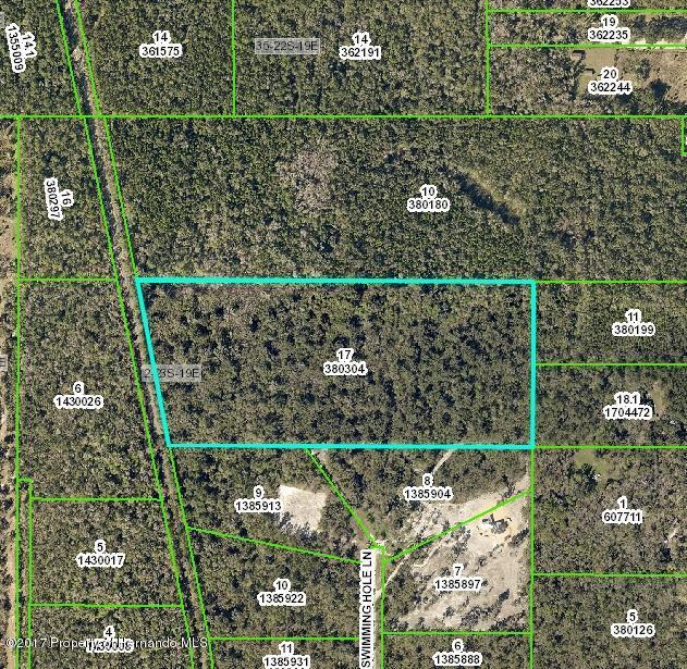 000 Swimming Hole Lane, Brooksville, FL 34601 (MLS #2188584) :: The Hardy Team - RE/MAX Marketing Specialists