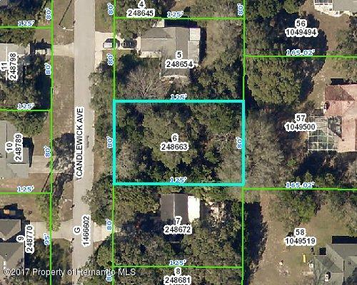 0 Candlewick Avenue, Spring Hill, FL 34608 (MLS #2188596) :: The Hardy Team - RE/MAX Marketing Specialists