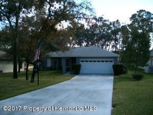7134 Pond View Court, Spring Hill, FL 34606 (MLS #2188640) :: The Hardy Team - RE/MAX Marketing Specialists