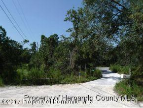 0 Jayson Drive, Brooksville, FL 34613 (MLS #2188641) :: The Hardy Team - RE/MAX Marketing Specialists