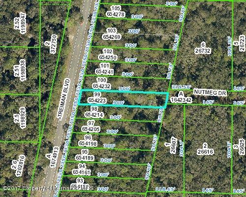 Address Not Published, Ridge Manor, FL 33597 (MLS #2188726) :: Premier Home Experts