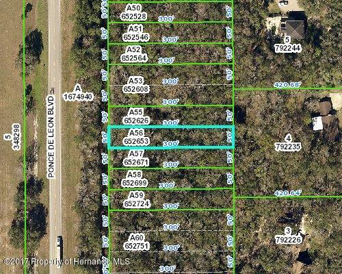 0 Ponce De Leon Boulevard, Brooksville, FL 34601 (MLS #2188959) :: The Hardy Team - RE/MAX Marketing Specialists