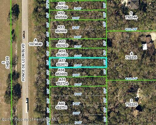0 Ponce De Leon Boulevard, Brooksville, FL 34601 (MLS #2188961) :: The Hardy Team - RE/MAX Marketing Specialists