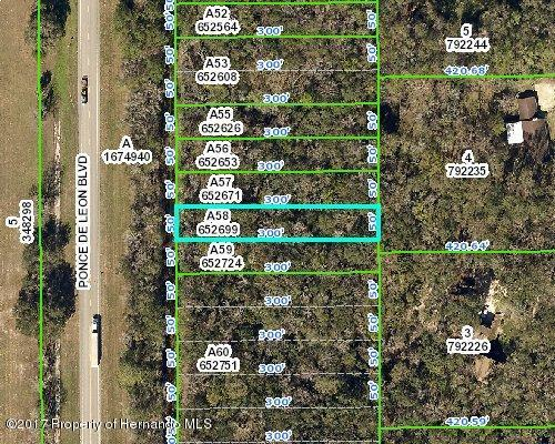 0 Ponce De Leon Boulevard, Brooksville, FL 34601 (MLS #2188962) :: The Hardy Team - RE/MAX Marketing Specialists