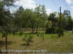 6200 Old California, Brooksville, FL 34604 (MLS #2189333) :: The Hardy Team - RE/MAX Marketing Specialists