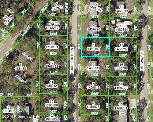 0 Horse Shoe Lane, Spring Hill, FL 34606 (MLS #2189335) :: The Hardy Team - RE/MAX Marketing Specialists