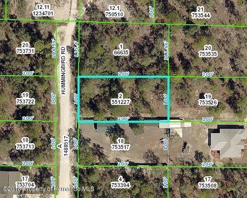 0 Hummingbird Road, Weeki Wachee, FL 34614 (MLS #2189526) :: The Hardy Team - RE/MAX Marketing Specialists