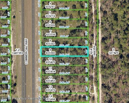 00 Commercial Way, Brooksville, FL 34613 (MLS #2189897) :: The Hardy Team - RE/MAX Marketing Specialists