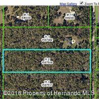 0 Culbreath Road, Brooksville, FL 34602 (MLS #2190117) :: The Hardy Team - RE/MAX Marketing Specialists