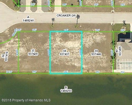 3352 Croaker Drive, Hernando Beach, FL 34607 (MLS #2190162) :: The Hardy Team - RE/MAX Marketing Specialists
