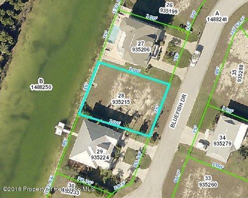 3367 Bluefish Drive, Hernando Beach, FL 34607 (MLS #2190167) :: The Hardy Team - RE/MAX Marketing Specialists