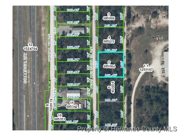 0 Necklace Warbler Avenue, Weeki Wachee, FL 34613 (MLS #2190169) :: The Hardy Team - RE/MAX Marketing Specialists