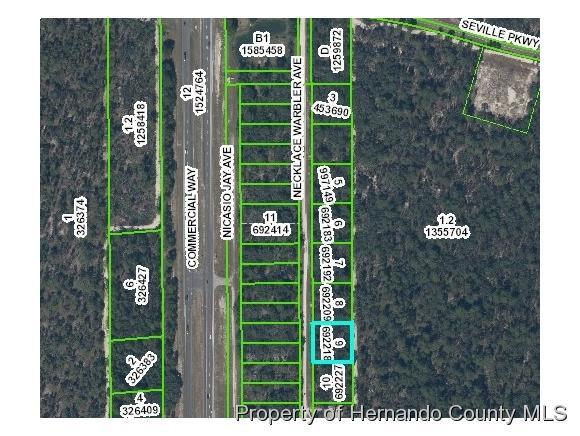 0 Necklace Warbler Avenue, Weeki Wachee, FL 34613 (MLS #2190175) :: The Hardy Team - RE/MAX Marketing Specialists