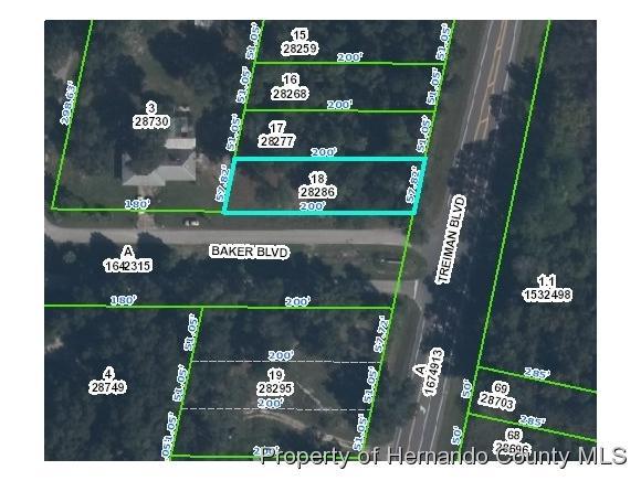 0 Treiman Boulevard, Webster, FL 33597 (MLS #2190178) :: The Hardy Team - RE/MAX Marketing Specialists