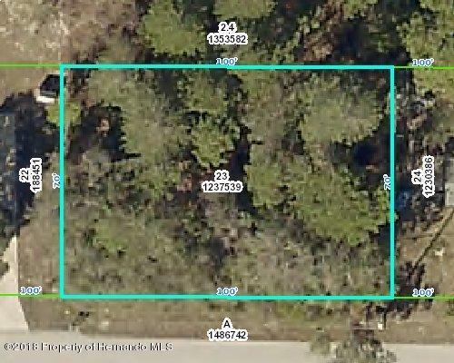 0 Norfolk Avenue, Spring Hill, FL 34606 (MLS #2190179) :: The Hardy Team - RE/MAX Marketing Specialists