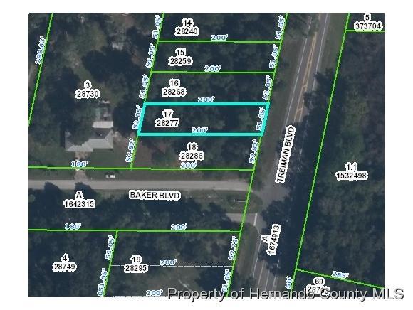 0 Treiman Boulevard, Webster, FL 33597 (MLS #2190182) :: The Hardy Team - RE/MAX Marketing Specialists